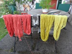 Färbung Krapp (links) und Wasserdost (rechts)
